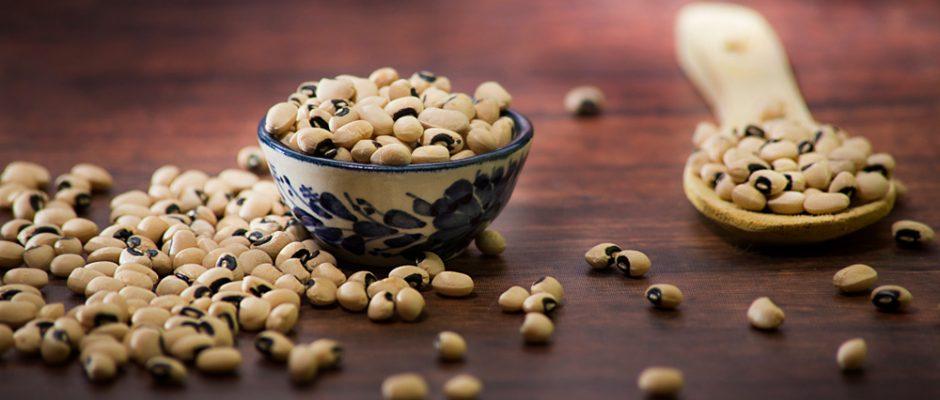 Manfaat Kacang Tolo